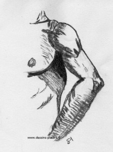 a drawing of a male torso