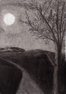 drawing of a night landscape